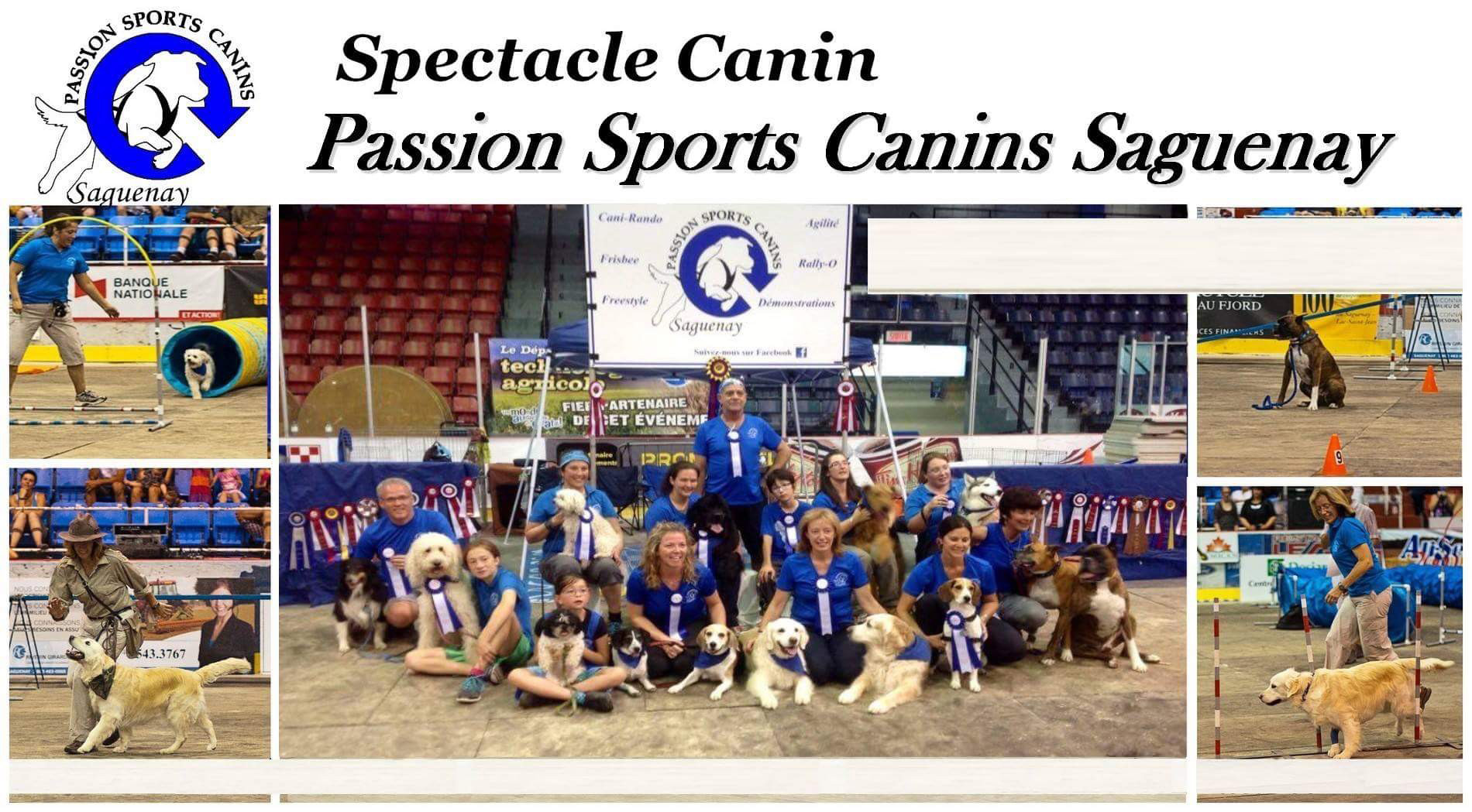 Spectacle canin